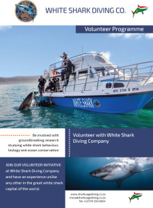 White Shark Diving Company - Volunteer Programme Brochure