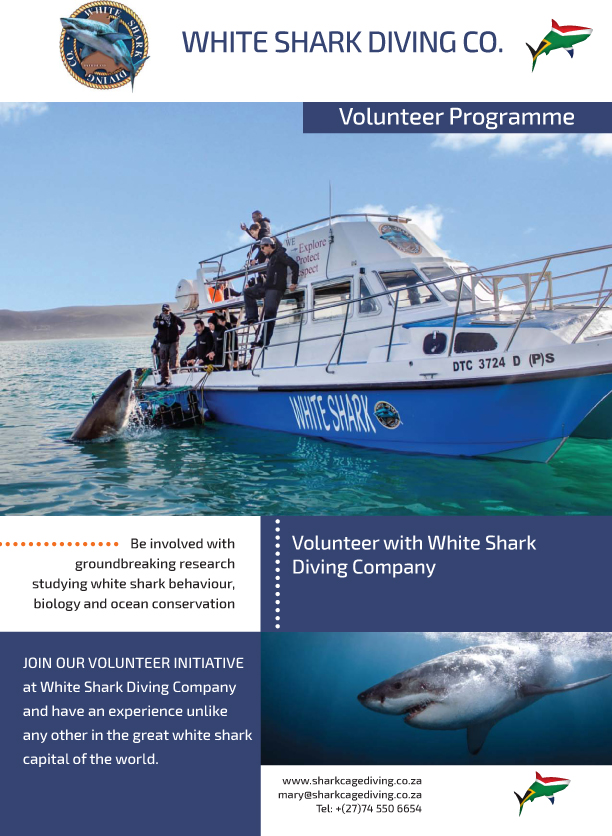 WSDC-VolunteWSDC Programme Brochure cover