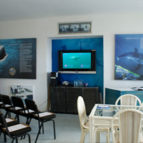sharkcagedive-facility-gallery2
