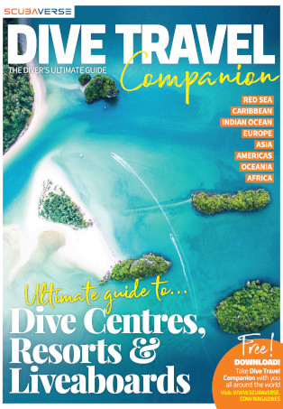Dive Travel Companion