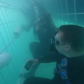 Hookah Cage Diving