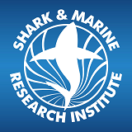 Shark & Marine Research Institute Logo