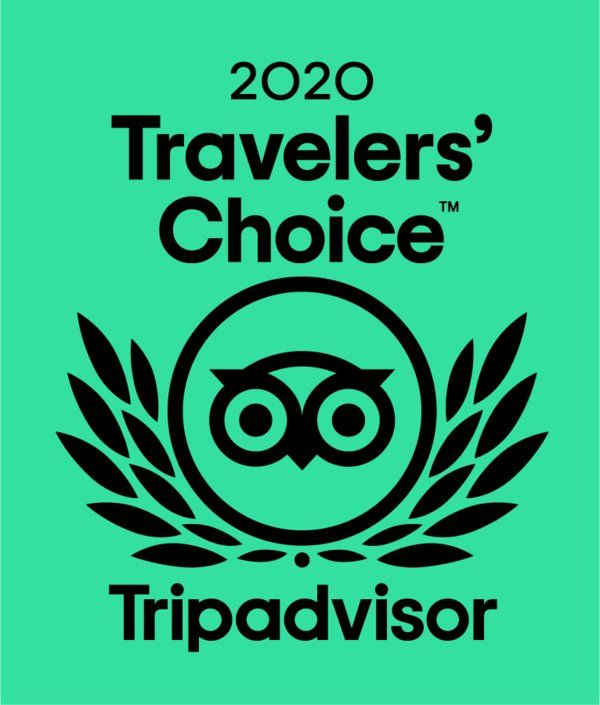 White Shark Diving Company Winner of the travelers choice award 2020