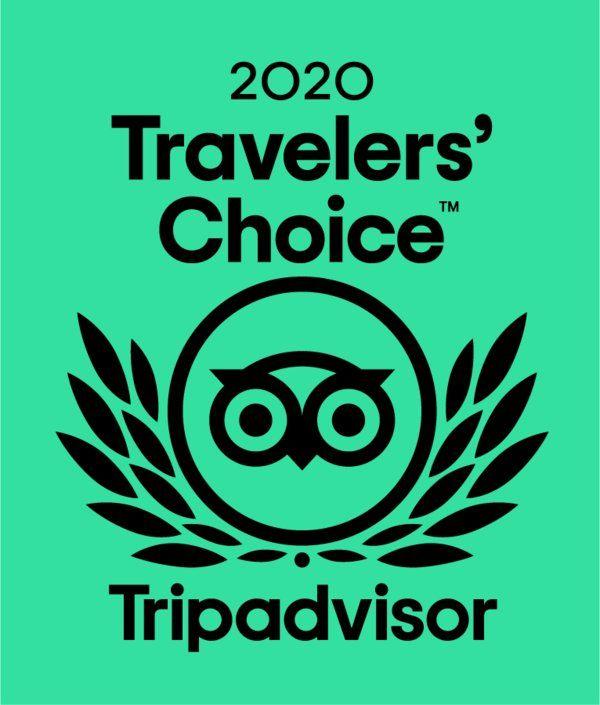 White Shark Diving Company Winner of the travelers choice award 2020