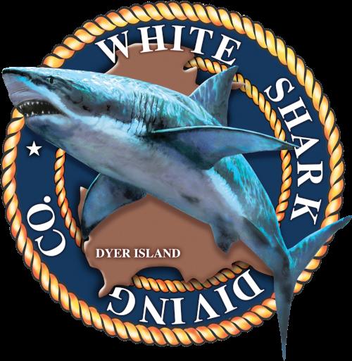 White Shark Diving Company media