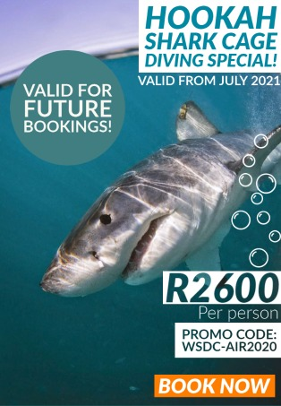Hookah Shark cage Diving with White Shark Diving Company, Gansbaai 2021.