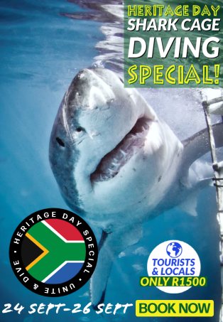 Heritage Day 2021 Shark Cage Diving Special